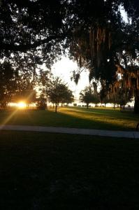 A beautiful morning for a long run